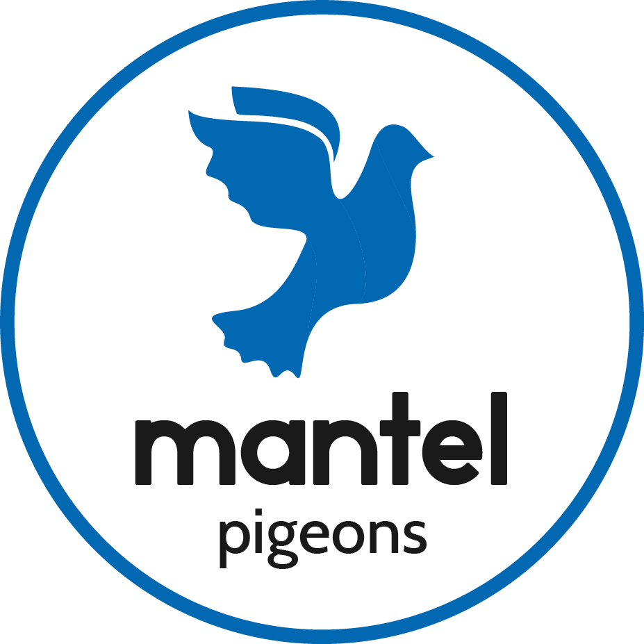 logo-pigeons-blauw
