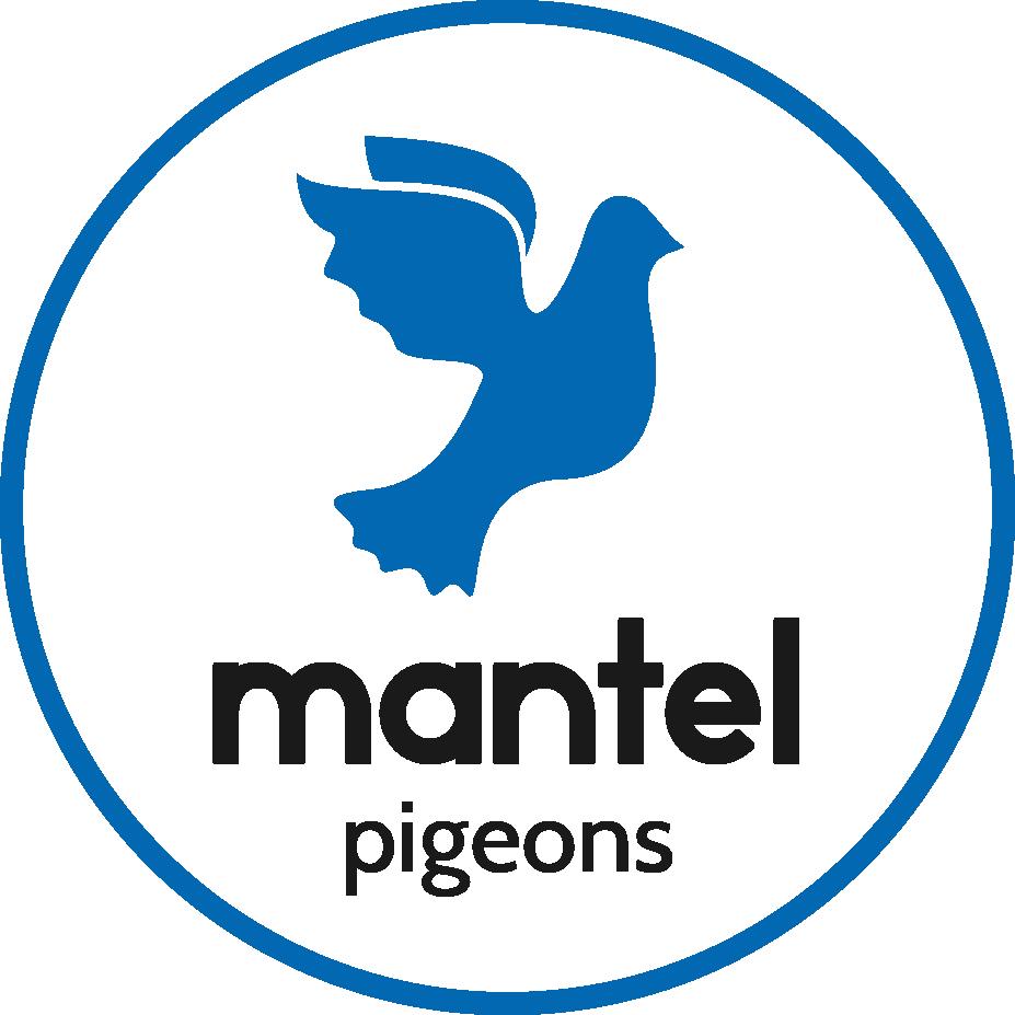logo-pigeons-blauw